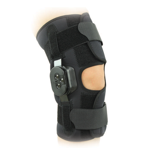 Immobilizer knee